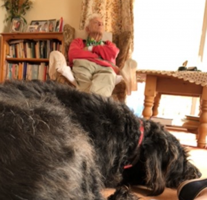 Old man in chair and dog on the floor