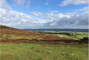 View from Dartmoor hillside with orange bracken