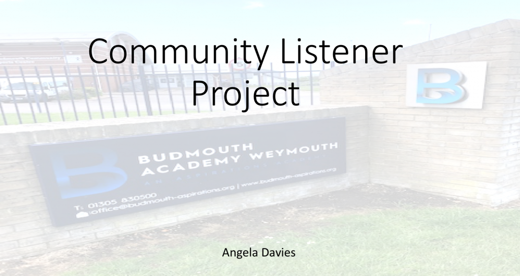 Introduction image for Angela Davies project